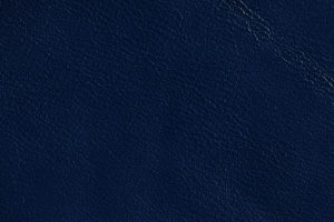 Focus Navy Blue